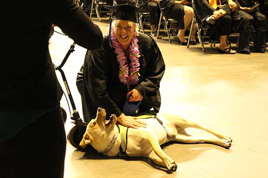 grad-and-dog